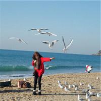 海边风景图片女生头像图片